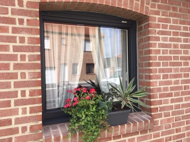 Poseur fenêtre Valenciennes